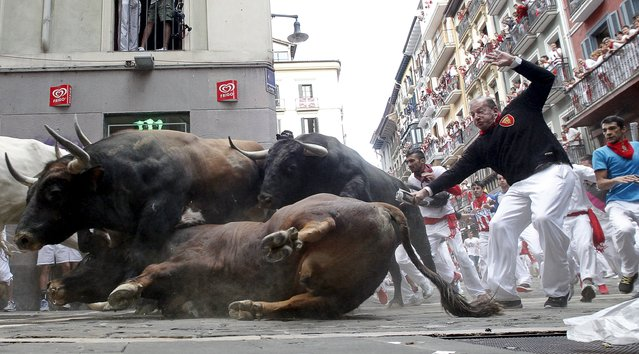 An El Tajo y La Reina ranch fighting bull falls to the ground as it takes the Mercaderes curve during the second running of the bulls of the San Fermin festival in Pamplona, northern Spain, July 8, 2015. One runner was gored in the run that lasted 2 minutes and 14 seconds, according to local media. (Photo by Susana Vera/Reuters)