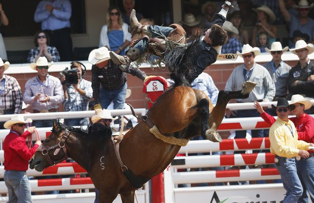Connor Hamilton of Calgary, Alberta, gets launched off the back of the horse Xrated Dancer in the Novice Bareback event during the Calgary Stampede rodeo in Calgary, Alberta, July 11, 2015. (Photo by Todd Korol/Reuters)