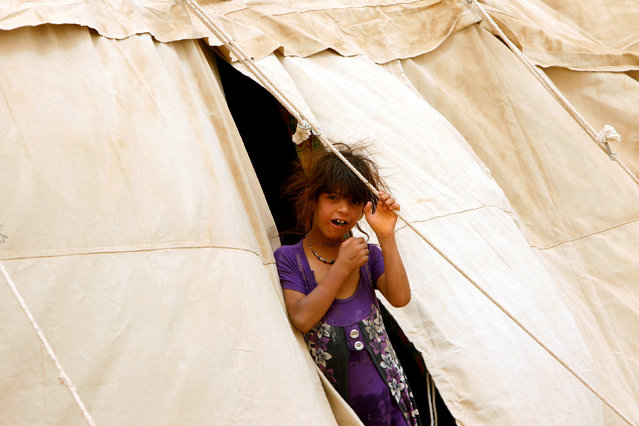 An Iraqi girl, who fled from Falluja because of Islamic State violence, pose for photographer at a refugee camp in Ameriyat Falluja, south of Falluja, Iraq, June 16, 2016. (Photo by Ahmed Saad/Reuters)
