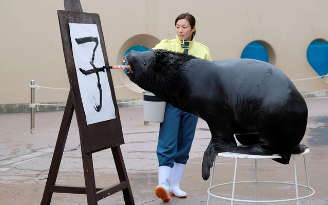 "Sixteen-year-old sea lion ""Leo"" writes the Chinese character for rat ahead of the upcoming Lunar New Year at Hakkeijima Sea Paradise in Yokohama, suburban Tokyo, December 26, 2019. Much of Asia and the world celebrated the Lunar New Year of the Pig in 2019 and will welcome in the Year of the Rat in January 2020. (Photo by Kazuhiro Nogi/AFP Photo)"