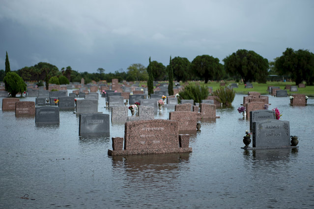A graveyard is seen as it floods during the aftermath of Hurricane Harvey August 27, 2017 in Pearland, Texas. Hurricane Harvey left a trail of devastation Saturday after the most powerful storm to hit the US mainland in over a decade slammed into Texas, destroying homes, severing power supplies and forcing tens of thousands of residents to flee. (Photo by Brendan Smialowski/AFP Photo)