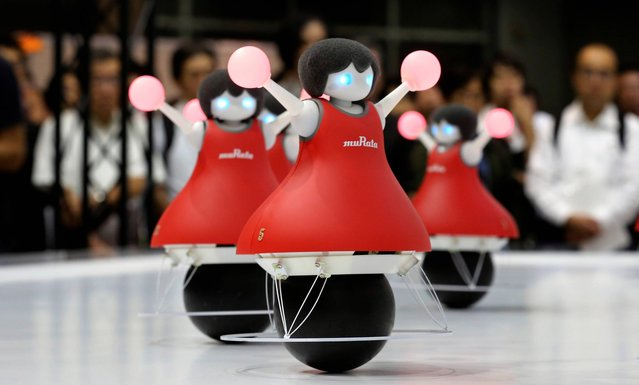 Robot cheerleaders developed by Murata Manufacturing perform synchronized dancing during the annual CEATEC Japan advanced technologies shnow  in Chiba Tuesday, October 7, 2014. They are 36 centimeters (14 inches) tall but their choreography is flawless. Murata Manufacturing, a leading electronic component manufacturer, presents a group of 10 robot cheerleaders with color-changing pom-pons that use gyroscopic sensors to roll on spherical bases in unison without losing their balance. (Photo by Koji Sasahara/AP Photo)