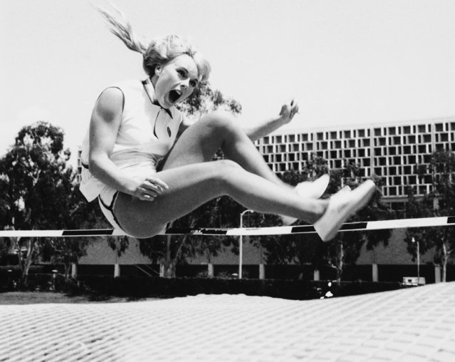 Giving out with a yell, Elke Sommer is tossed on the trampoline as she trains for her movie role as an athlete, on the playing field of the University of California at Los Angeles, June 8, 1967. (Photo by AP Photo)