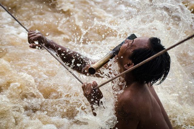 """Waterfall Fisherman of Si Phan Don: Around the turbulent waterfalls of Si Phan Don in Southern Laos a select few fisherman risk their lives daily to catch fish from the swollen Mekong River. The fisherman use small bamboo traps to catch migratory fish making their move through the falls. Here the fisherman holds on for his life knowing that one mistake here would result in certain death. The raging Mekong pulls at his body as his weary arms cling desperately to hold him on the rope. Times like these rely on full concentration and both hands on the rope at a time, any extra luggage has to go in the mouth, knives included"". (Photo and comment by Jacob James/National Geographic Photo Contest via The Atlantic)"