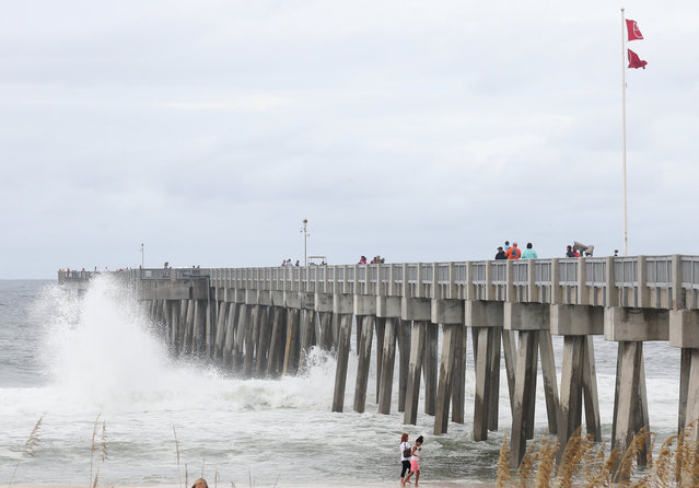 Waves break against the County Pier as beachgoers were able to visit before it was closed in the afternoon in advance of Tropical Storm Hermine, Thursday, September 1, 2016, in Panama City Beach, Fla. Hermine strengthened into a hurricane Thursday and steamed toward Florida's Gulf Coast, where people put up shutters, nailed plywood across store windows and braced for the first hurricane to hit the state in over a decade. (Photo by Patti Blake/News Herald via AP Photo)