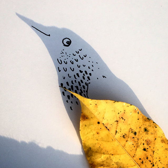 """""""Birdy on shore leaf"""". (Photo by Vincent Bal/The Guardian)"""