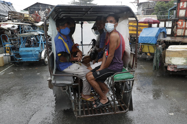 Residents wearing face masks to help prevent the spread of the coronavirus evacuate with their chickens to safer grounds as rains from a typhoon locally known as Goni start to pour in Manila, Philippines on Sunday November 1, 2020. (Photo by Aaron Favila/AP Photo)