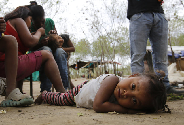 In this June 26, 2018 photo, a Venezuelan indigenous Yupka girl plays on the ground while another gets lice picked from her head at a camp set up in Cucuta, Colombia, near the border with Venezuela. Along the banks of the Tachira River dividing Colombia and Venezuela, many of the indigenous children have lice and distended bellies from malnutrition or parasites. Tribe leader Dionisio Finol said they are better off there than in Venezuela, where at least they can eat. (Photo by Fernando Vergara/AP Photo)