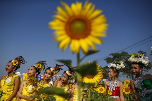 Dancers pose for photographs at a sunflower field in Bangkok, Thailand, January 13, 2016. (Photo by Athit Perawongmetha/Reuters)