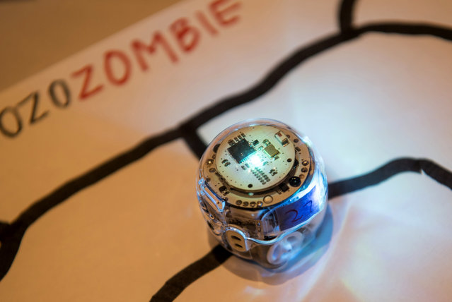 An Evollve Inc. Ozobot smart toy robot is displayed for a photograph at the 2017 Consumer Electronics Show (CES) in Las Vegas, Nevada, U.S., on Thursday, January 5, 2017. (Photo by David Paul Morris/Bloomberg)