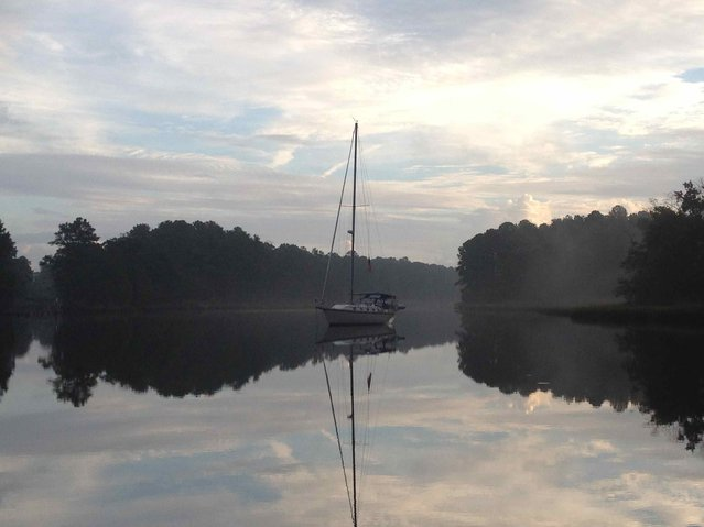 The Great Dismal Swamp