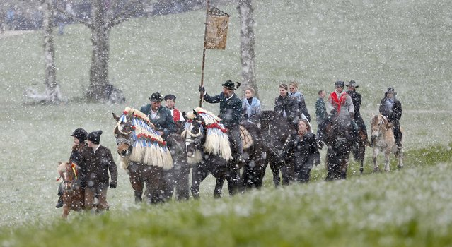 Local residents dressed in traditional Bavarian clothes of the region  ride  through heavy snowfall to get blessing for men and beast at the traditional Georgi (St. George)  horse riding procession on Easter Monday in Traunstein, southern Germany, Monday, April 6, 2015. (Photo by Matthias Schrader/AP Photo)