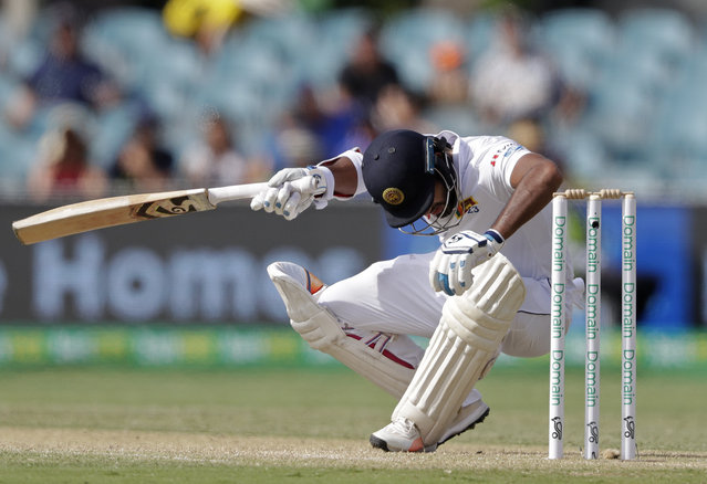 Sri Lanka's Dimuth Karunaratne falls to the ground after he was struck in the head by a delivery from Australia's Pat Cummins on day 2 of their cricket test match in Canberra, Saturday, February 2, 2019. (Photo by Rick Rycroft/AP Photo)