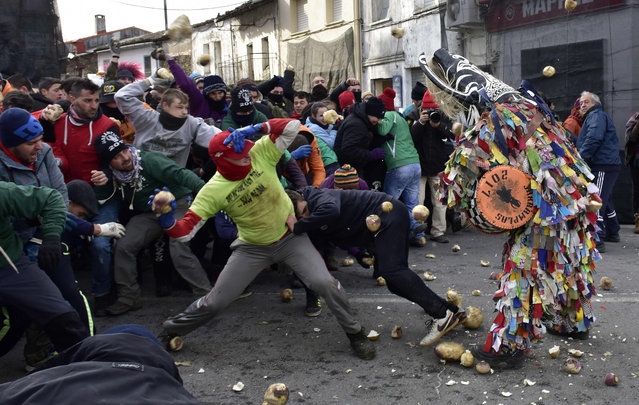 People throw turnips at a man representing the Jarrampla, sporting a costume covered in multicoloured ribbons and his face hidden behind a conical mask with a huge nose, horns and a horse' s mane, in Piorna on January 19, 2017 during the annual San Sebastian festivities The tradition has differing views on its origin with locals claiming that Jarramplas was a cattle thief who villagers got their revenge on by hurling vegetables at him while others say that this holiday is derived from mythology and the punishment that Hercules gave Cacus, meanwhile others acertain that Jarramplas was an imported native American tradition. (Photo by Gerard Julien/AFP Photo)