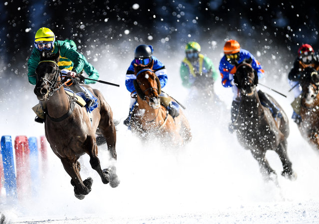 Alvin the Drummer, with Kieran O'Neill up, during the GP Moyglare Stud flat race at the White Turf horse racing event at St Moritz, Switzerland on February 17, 2019. (Photo By Ramsey Cardy/Sportsfile via Getty Images)