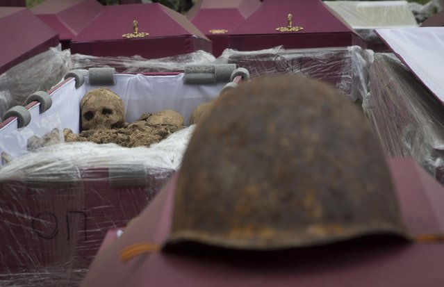 In this photo taken Thursday, May 7, 2015 photo,  remains of Soviet soldiers killed during World War II lay in a coffin prior to a reburial ceremony at the Sinyavino Heights memorial near the village of Sinyavino, 50 km (31 miles) east of  St. Petersburg, Russia. Hundreds of people came to a World War II battleground outside St. Petersburg this week to bury the remains of 964 Soviet soldiers recovered by volunteer search teams. (Photo by Dmitry Lovetsky/AP Photo)