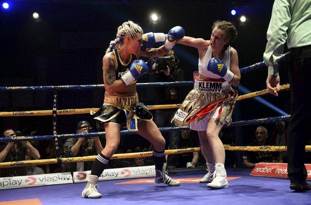 Boxing, WBC Female World Super Welterweight title, Hovet arena, Stockholm, Sweden on April 23, 2016: Mikaela Lauren of Sweden fights Ivana Habazin of Croatia. (Photo by Fredrik Sandberg/Reuters/TT News Agency)
