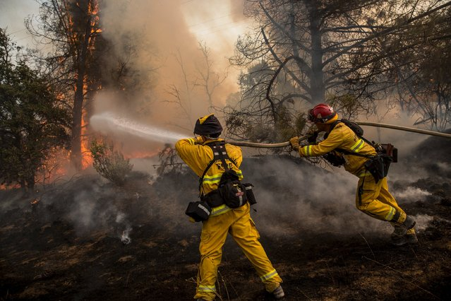Firefighters race to battle a spot fire at the Rocky Fire in Lake County, California July 30, 2015. The Rocky Fire broke out on Wednesday afternoon in Lake County, 110 miles (180 km) north of San Francisco. (Photo by Max Whittaker/Reuters)