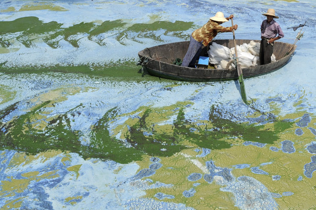Fishermen row a boat in the algae-filled Chaohu Lake in Hefei, Anhui province, June 19, 2009. The country has invested 51 billion yuan ($7.4 billion) towards the construction of 2,712 projects for the treatment of eight rivers and lakes including Huaihe River, Haihe River, Liaohe River, Chaohu Lake, Dianchi Lake, Songhua River, the Three Gorges region of the Yangtze River and its upstream area, Xinhua News Agency reported. (Photo by Jianan Yu/Reuters)