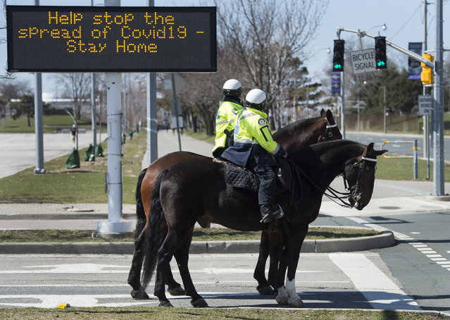 Toronto police officers stop at a red light as they patrol on their service horses in Toronto on Thursday, April 2, 2020. Health officials and the government has asks that people stay inside to help curb the spread of the coronavirus also known as COVID-19. (Photo by Nathan Denette/The Canadian Press via AP Photo)