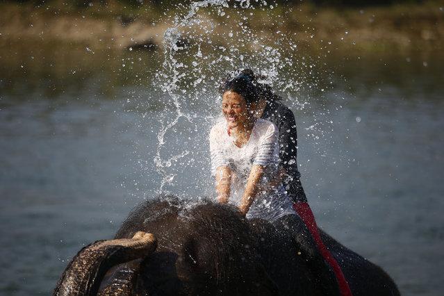 A tourist is splashed by an elephant on the Rapti river in Chitwan, Nepal on December 28, 2015. (Photo by Skanda Gautam/Zuma Press/Corbis)