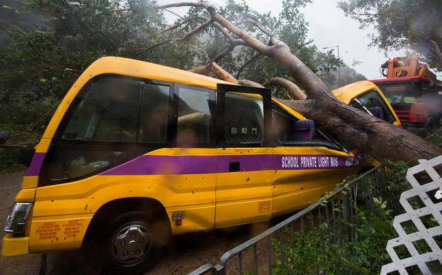 A school bus is struck by a fallen tree during the passage of Super Typhoon Mangkhut near Heng Fa Chuen housing estate in Hong Kong, China, 16 September 2018. The Hong Kong government hoisted the T10 signal which is the highest and most severe hurricane warning in Hong Kong. (Photo by Alex Hofford/EPA/EFE)