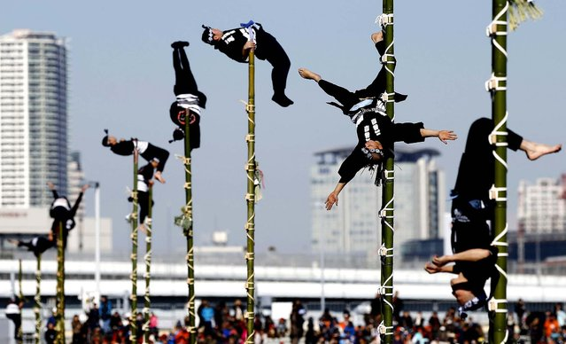 Members of the Edo Firemanship Preservation Association display their balancing skills atop bamboo ladders during a New Year demonstration by the fire brigade in Tokyo, on January 6, 2014. (Photo by Yuya Shino/Reuters)