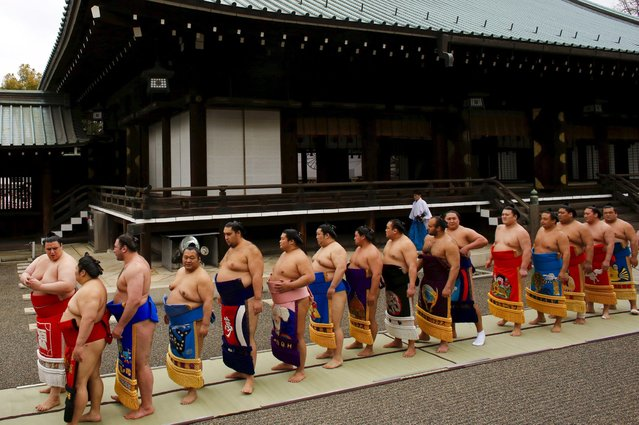 "Sumo wrestlers line up after praying before the start of the ""Honozumo"" ceremonial sumo tournament at the Yasukuni Shrine in Tokyo April 3, 2015. (Photo by Thomas Peter/Reuters)"