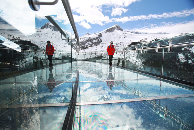 Visitors take in the opening day of the Glacier Skywalk near Alerta's Columbia Icefields in Jasper National Park Thursday May 1, 2014. (Photo by Gavin Young/Calgary Herald)
