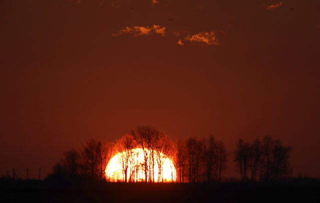 Trees silhouetted against the rising sun in outskirts of capital Minsk, Belarus, Friday, April 14, 2017, during a spring morning. (Photo by Sergei Grits/AP Photo)