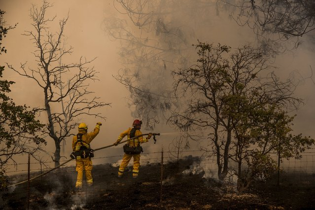 Firefighters battle a spot fire at the Rocky Fire in Lake County, California July 30, 2015. The Rocky Fire broke out on Wednesday afternoon in Lake County, 110 miles (180 km) north of San Francisco. (Photo by Max Whittaker/Reuters)