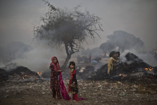 Pakistani children, survey woods from a burning field, which was used by fruit and vegetable sellers to store their wooden boxes, on the outskirts of Islamabad, Pakistan, Monday, November 4, 2013. (Photo by Muhammed Muheisen/AP Photo)