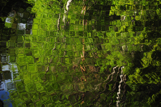 """Water Magic: In a world of a million water pictures, it's easy to dismiss this as ""just another reflection shot"". Still, this unedited image proves how unreal water can behave under certain circumstances. Here I stand at the narrowest point of a small lake, and as usual I have thrown objects into the water to see how it behaves visually. Because the lake was so narrow, only a few meters, the circles start to recoil from land. The effect is called, to my knowledge, interference, but I have yet to see anything similar, even after all these years of throwing rocks into the water"". (Photo and comment by Jorgen Tharaldsen/National Geographic Photo Contest via The Atlantic)"
