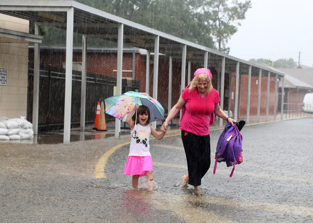 Ariel Callahan, 5, left, and her grandmother Kelly Smith, navigate rain water at Anona Elementary School in Largo, Fla., Wednesday, August 31, 2016. The National Hurricane Center in Miami says Tropical Storm Hermine is gaining strength as it rumbles toward Florida's Gulf Coast. (Photo by Douglas R. Clifford/Tampa Bay Times via AP Photo)