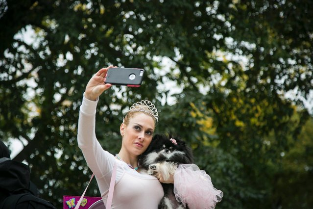 Victoria Viscardi takes a selfie with her dog Gia Marie, a Pomeranian, dressed as a Jewelry Box, at the 25th annual Tompkins Square Halloween Dog Parade in New York, October 24, 2015. (Photo by Lance Booth/ABC News)