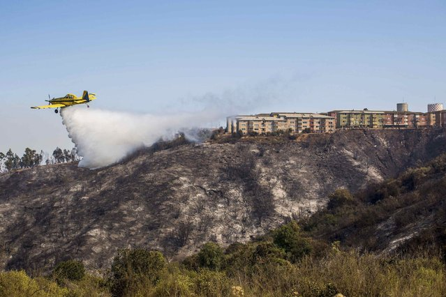 A plane assists in putting out a forest fire at the hills in Valparaiso city, northwest of Santiago, March 14, 2015. Thousands of people were evacuated from around the Chilean port city of Valparaiso on Friday as a forest fire raged out of control, emergency service agency Onemi said. (Photo by Pablo Sanhueza/Reuters)