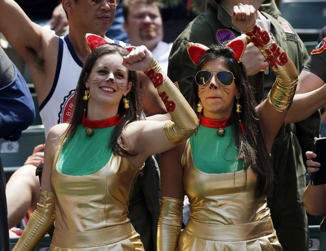 """Rugby fans dress as the Japanese cat character """"Maneki-neko"""" during the second day match of the Hong Kong Sevens rugby tournament in Hong Kong, Saturday, March 28, 2015. (Photo by Kin Cheung/AP Photo)"""