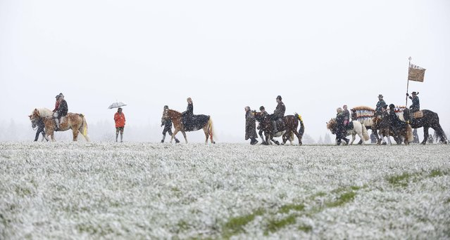 Local residents dressed in traditional Bavarian clothes of the region  ride through heavy snowfall  at the traditional Georgi (St. George)  horse riding procession on Easter Monday in Traunstein, southern Germany, Monday, April 6, 2015. (Photo by Matthias Schrader/AP Photo)