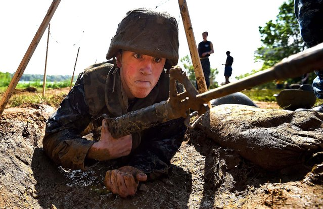 A member of the United States Naval Academy freshman class crawls through trenches at the wet and sandy station during the annual Sea Trials training exercise at the U.S. Naval Academy on May 13, 2014 in Annapolis, Maryland. (Photo by Patrick Smith/Getty Images)