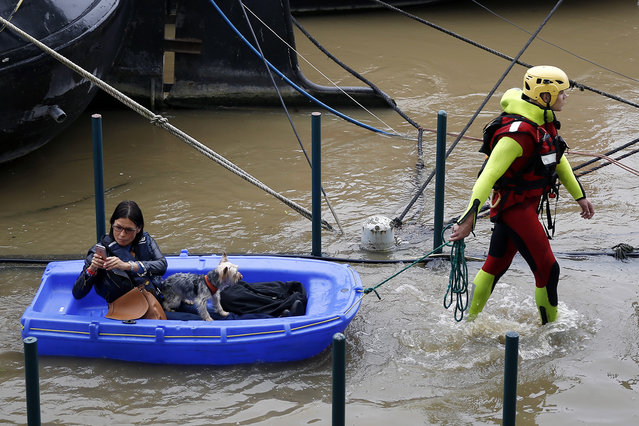 A fireman pulls a woman and her dog to shore, by a row of houseboats on the river Seine in Paris France, Wednesday June 1, 2016. The Seine River has overflowed embankments in Paris as floods hit or threaten cities and towns around France. (Photo by Jerome Delay/AP Photo)