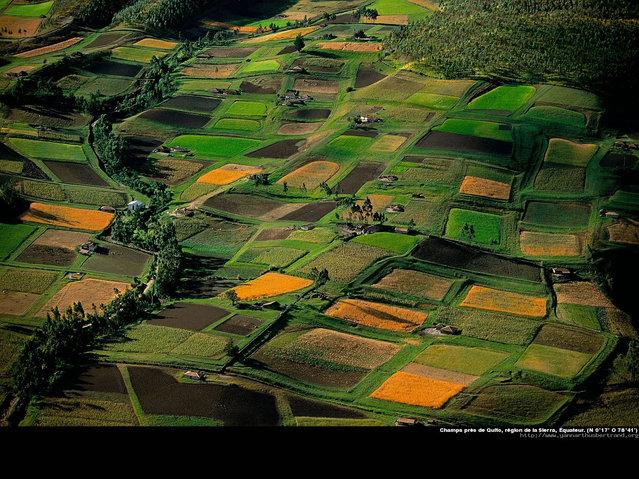 Amazing Photos by Yann Arthus-Bertrand. Part One