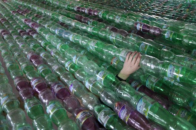 Jakub Bures' hand is seen in between plastic bottles in a garage in Nymburk April 3, 2014. (Photo by David W. Cerny/Reuters)