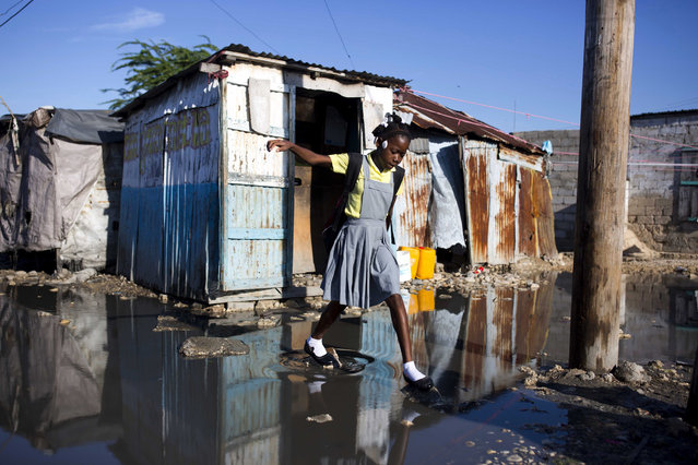 A student balances on stones as she crosses sewage water on her way to class in the Cite Soleil, Haiti, on November 21, 2017. (Photo by Dieu Nalio Chery/AP Photo)