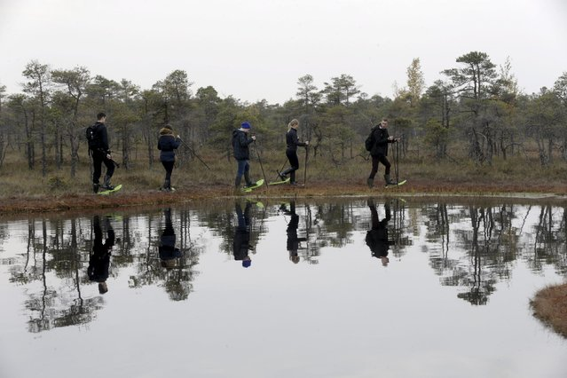People are reflected in the lake as they take a tour of the Great Kemeri Bog, Latvia, October 17, 2015. (Photo by Ints Kalnins/Reuters)