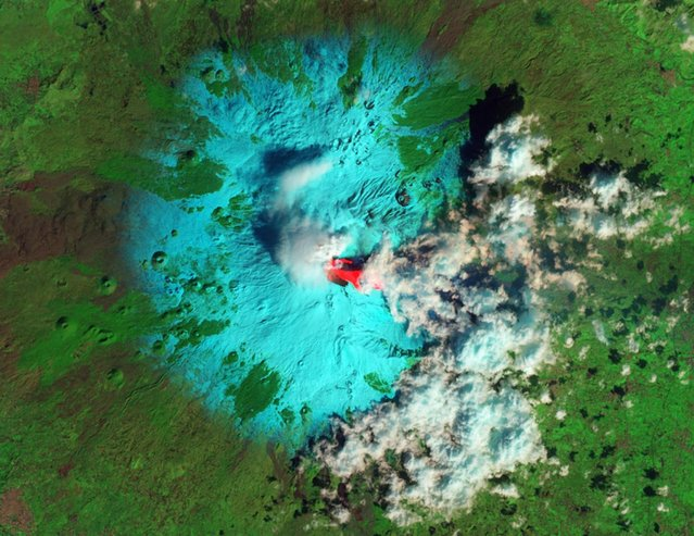 Italy's Etna Volcano is seen erupting in this false-color handout image taken with the Advanced Land Imager (ALI) on NASA's Earth Observing-1 (EO-1) satellite at 08:59 GMT February 19, 2013. Each outburst, or paroxysm, featured emission of lava flows, pyroclastic flows, lahars, and an ash cloud,according to the Italian Istituto Nazionale di Geofisica e Vulcanologia (INGV). The false-color image combines shortwave infrared, near infrared, and green light in the red, green, and blue channels of an RGB picture.  Fresh lava, erupted hours earlier, is seen as bright red. (Photo by Jesse Allen/Robert Simmon/Reuters/NASA EO-1 ALI)
