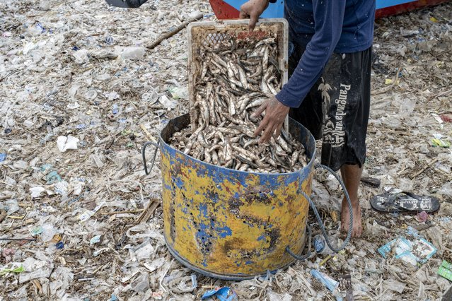 A fisherman fills a bucket with catch on a beach covered in plastic waste, at a fishing village in Kedonganan, Bali, Indonesia, 18 January 2021. Bali's famous beaches have been buried in tons of plastic rubbish pushed ashore by monsoon. Environmental experts say that the problem is becoming an annual event related to monsoon weather, poor waste management and a global marine pollution crisis. (Photo by Made Nagi/EPA/EFE)
