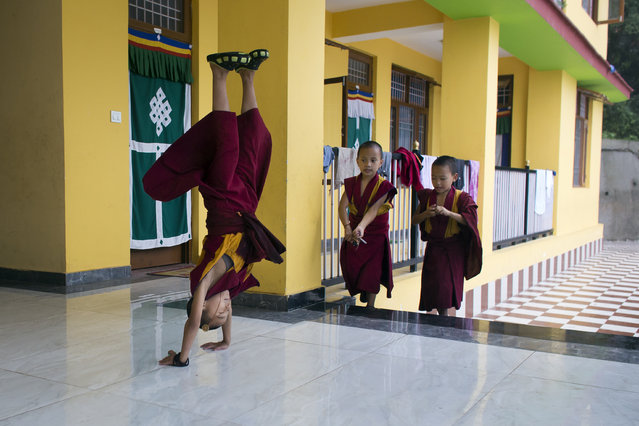 In this Monday, July 9, 2018 photo, nine-year-old Tenzin Kunphen performs a somersault during lunch break at Namgyal Monastery School in Dharmsala, India. The school, which was established in 2017, provides religious and secular education to monks. (Photo by Ashwini Bhatia/AP Photo)