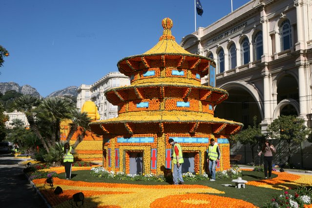 """Workers sets up a pagoda made with lemons and oranges during the 82nd Lemon festival in Menton, southeastern France, Thursday, February 12, 2015. The theme this year is """"Tribulations of a Lemon in China"""" from Saturday 14th February to Wednesday 4th march. (Photo by Lionel Cironneau/AP Photo)"""