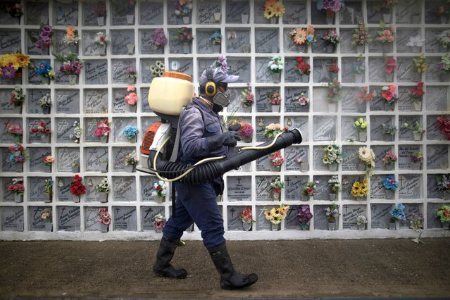 A cemetery worker sprays disinfect at niches inside Nuestra Señora de Belen cemetery as a preventive measure amid the COVID-19 pandemic in Fusagasuga, Colombia, Wednesday, June 9, 2021. (Photo by Ivan Valencia/AP Photo)