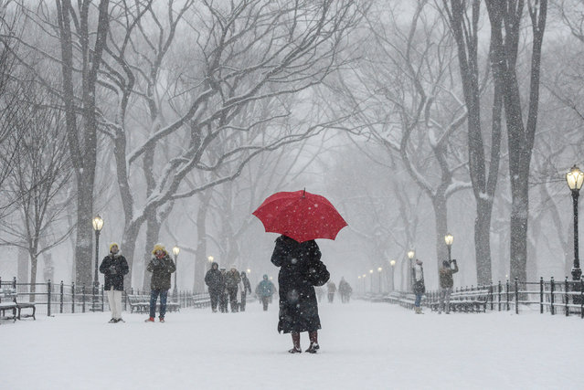 A woman walks through Central Park with a red umbrella during a snow storm in New York City, U.S. January 7, 2017. (Photo by Stephanie Keith/Reuters)